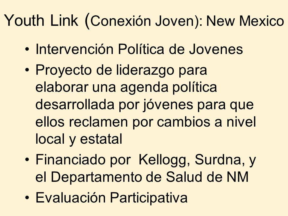 Youth Link ( Conexión Joven): New Mexico Intervención Política de Jovenes Proyecto de liderazgo para elaborar una agenda política desarrollada por jóv