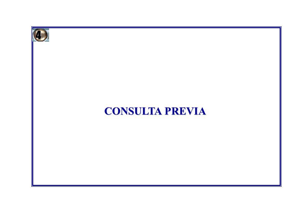 CONSULTA PREVIA 4