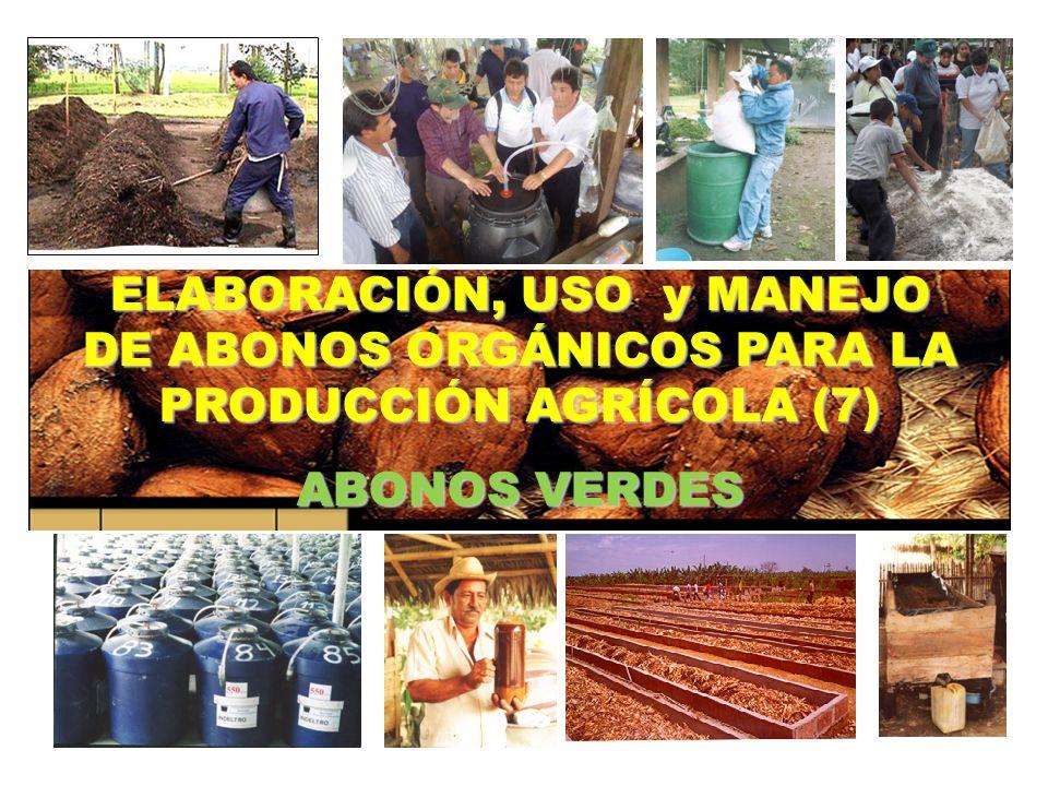 ELABORACIÓN, USO y MANEJO DE ABONOS ORGÁNICOS PARA LA PRODUCCIÓN AGRÍCOLA (7) ABONOS VERDES