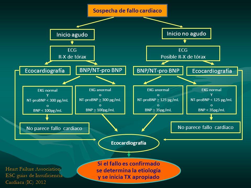 Indicaciones Trasplante Cardiaco Insuficiencia cardiaca avanzada (etapa D), irreversible e incorregible.