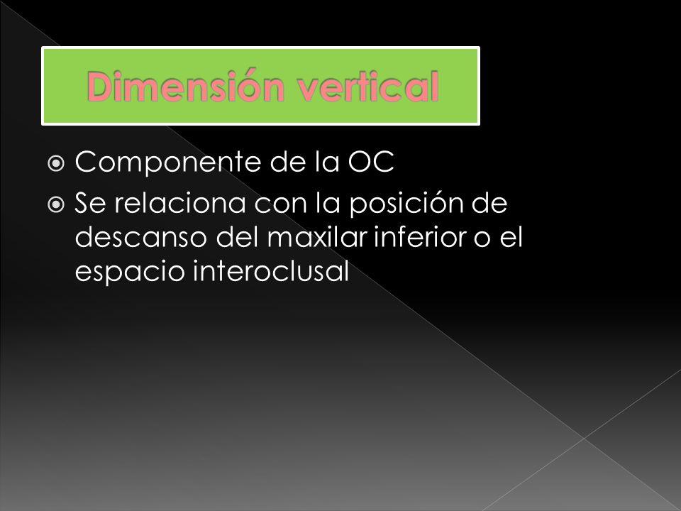 Se diferencian de acuerdo a la posición de la mandíbula con respecto al maxilar fijo en: Dimensión vertical oclusal Dimensión vertical postural o de reposo
