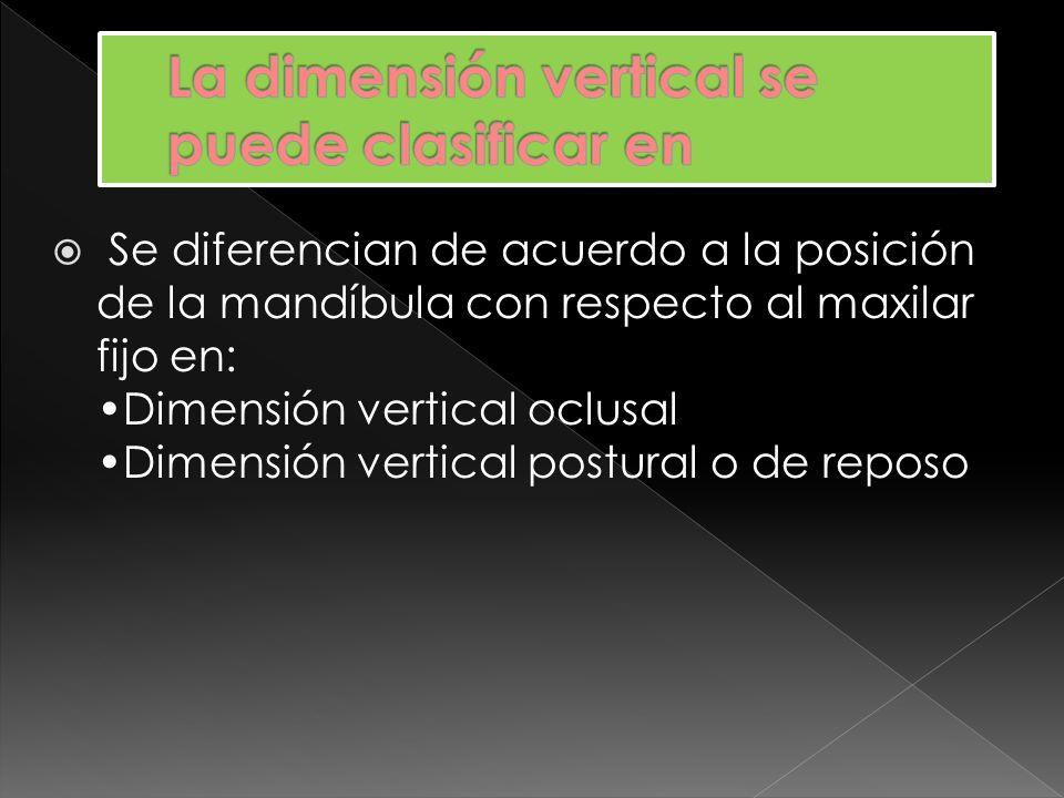 Hace referencia a la posición vertical de la mandíbula con respecto al maxilar superior cuando los dientes superiores e inferiores intercuspidan (oclusión habitual), en su posición más cerrada.