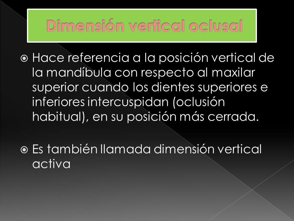 Hace referencia a la posición vertical de la mandíbula con respecto al maxilar superior cuando la mandíbula se encuentra en una posición de descanso o posición fisiológica postural.