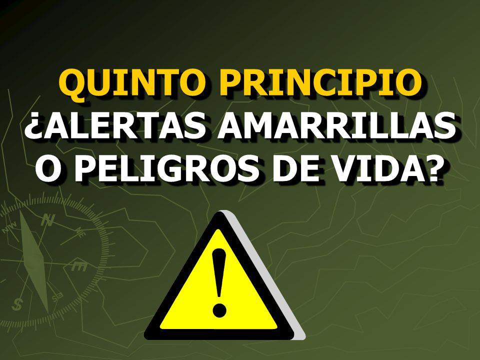 QUINTO PRINCIPIO ¿ALERTAS AMARRILLAS O PELIGROS DE VIDA?