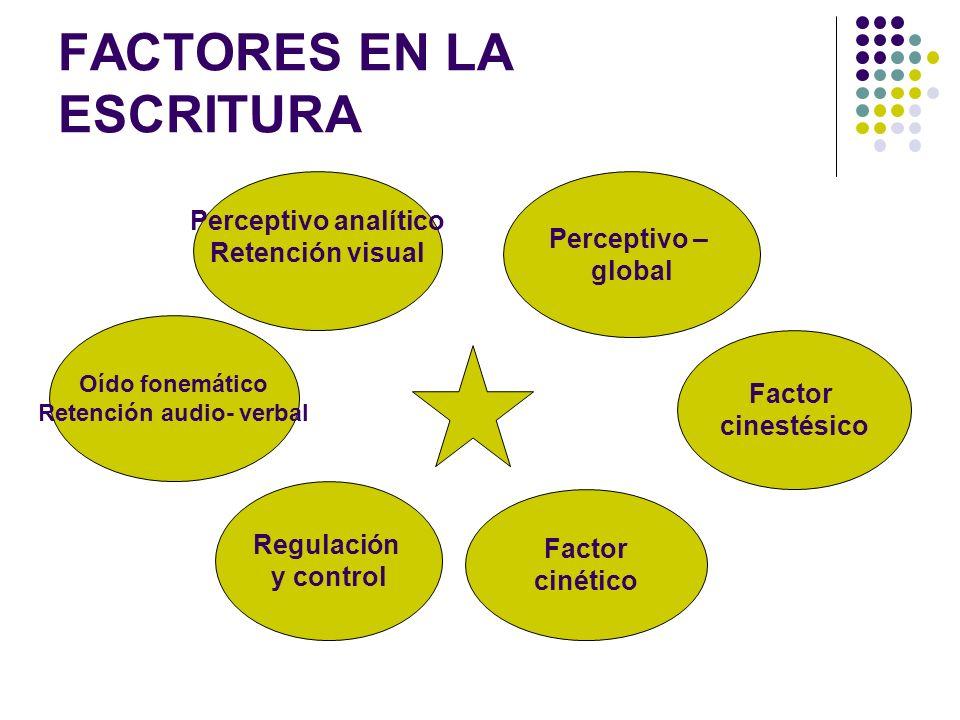 FACTORES DE LA LECTURA Perceptivo analítico Retención visual Perceptivo – global espacial Regulación y control Factor cinético Integración cinestésica Oído fonemático Retención audio verbal Activación inespecífica