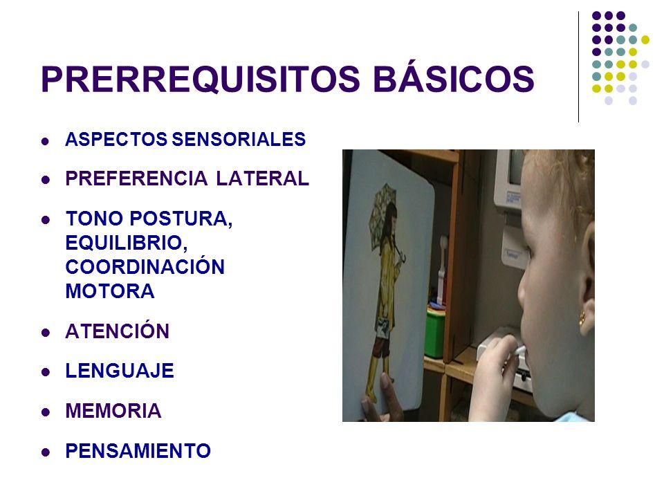 PILARES DEL APRENDIZAJE ACTIVIDAD NERVISO SUPERIOR EQUILIBRIO PREDOMINIO EXCITACIÓN PREDOMINIO INHIBICIÓN DISPOSITIVOS BÁSICOS PARA EL APRENDIZAJE MOTIVACIÓN SENSOPERCEPCIÓN MEMORIA ATENCIÓN FUNCIONES CEREBRALES SUPERIORES GNOSIAS PRAXIAS LENGUAJE EQUILIBRIO AFECTIVO - EMOCIONAL