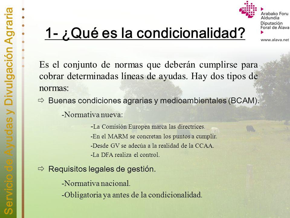 Servicio de Ayudas y Divulgación Agraria 1.1 - Buenas Condiciones Agrarias y Medioambientales (BCAM).