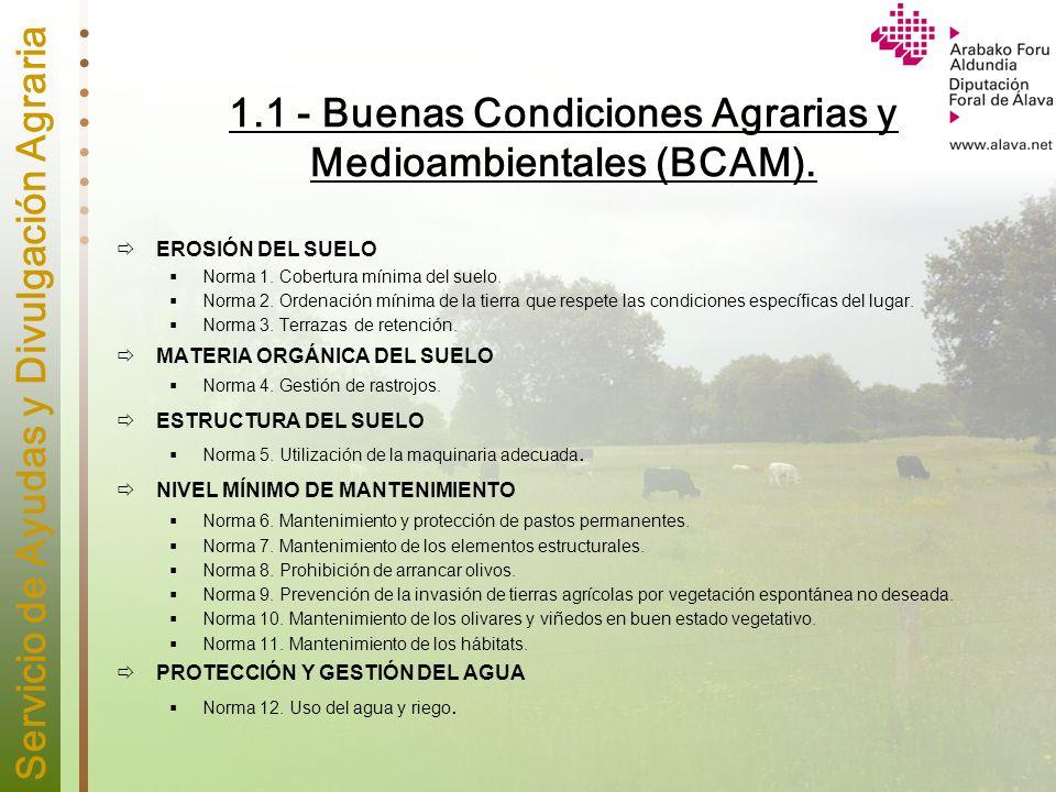 Servicio de Ayudas y Divulgación Agraria 1.1 - Buenas Condiciones Agrarias y Medioambientales (BCAM). EROSIÓN DEL SUELO Norma 1. Cobertura mínima del