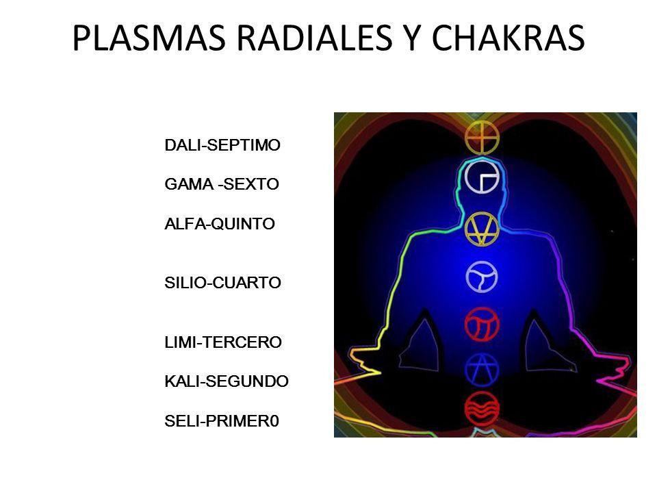 PLASMAS RADIALES Y CHAKRAS DALI-SEPTIMO GAMA -SEXTO ALFA-QUINTO SILIO-CUARTO LIMI-TERCERO KALI-SEGUNDO SELI-PRIMER0