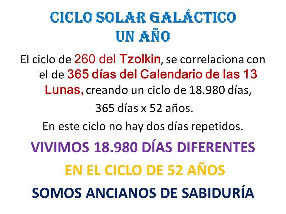 CICLO SOLAR GALÁCTICO UN AÑO El ciclo de 260 del Tzolkin, se correlaciona con el de 365 días del Calendario de las 13 Lunas, creando un ciclo de 18.98