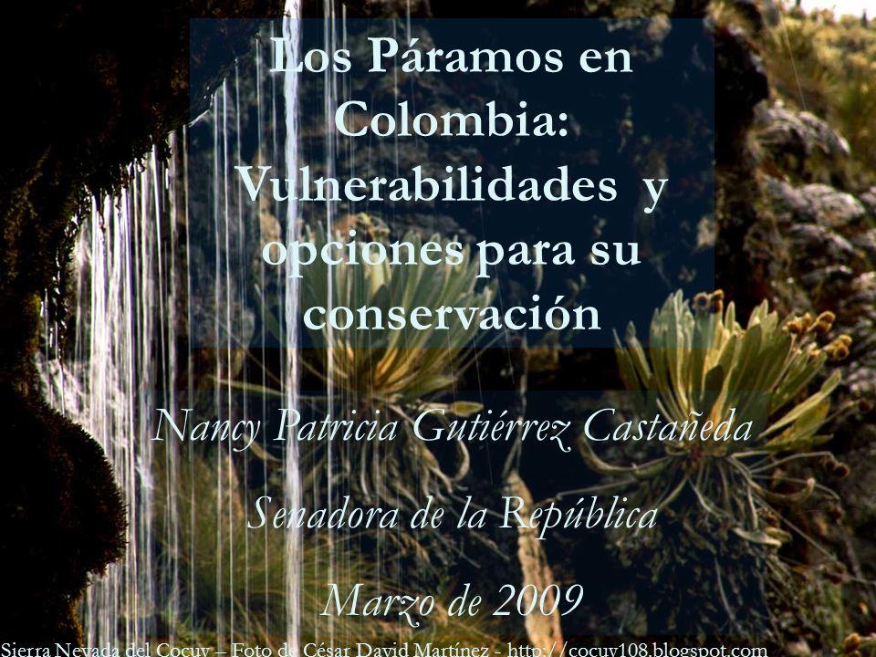 LEY DE PARAMOS Foto: José Vicente Rodríguez Páramo de Guerrero Los Páramos en Colombia: Vulnerabilidades y opciones para su conservación Nancy Patrici