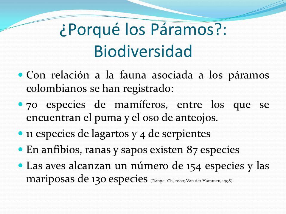 Con relación a la fauna asociada a los páramos colombianos se han registrado: 70 especies de mamíferos, entre los que se encuentran el puma y el oso d