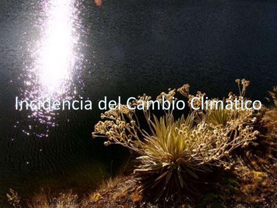 Incidencia del Cambio Climático Sierra Nevada del Cocuy – Foto de César David Martínez - http://cocuy108.blogspot.com/