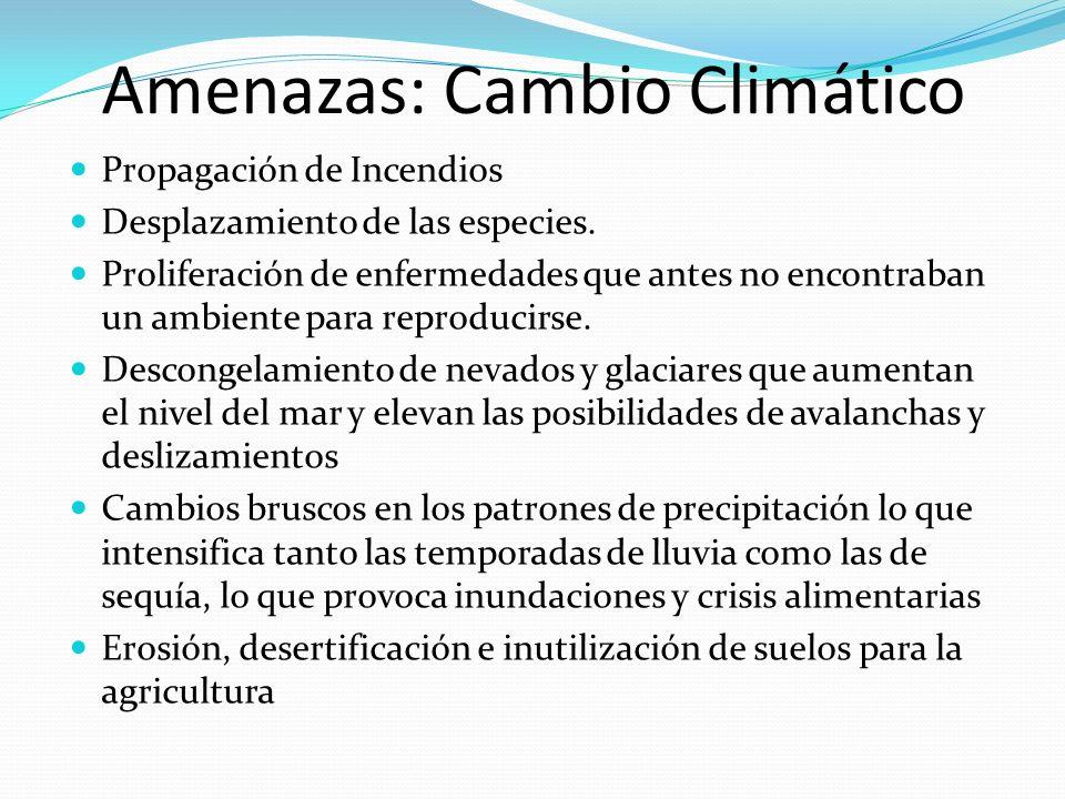 Amenazas: Cambio Climático Propagación de Incendios Desplazamiento de las especies. Proliferación de enfermedades que antes no encontraban un ambiente