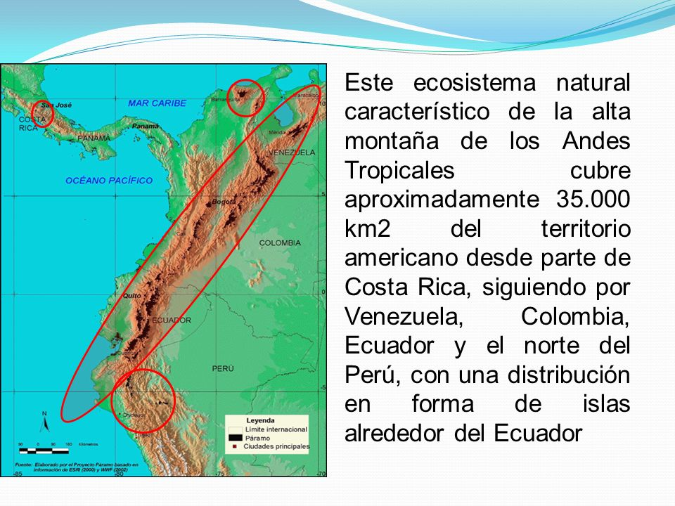 Este ecosistema natural característico de la alta montaña de los Andes Tropicales cubre aproximadamente 35.000 km2 del territorio americano desde part