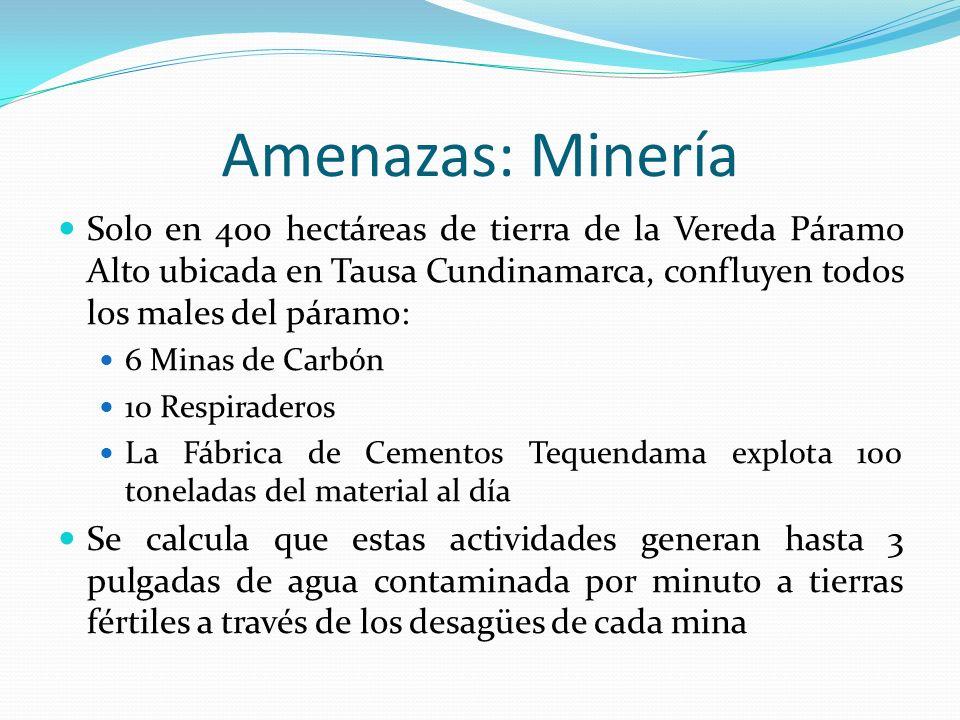 Amenazas: Minería Solo en 400 hectáreas de tierra de la Vereda Páramo Alto ubicada en Tausa Cundinamarca, confluyen todos los males del páramo: 6 Mina
