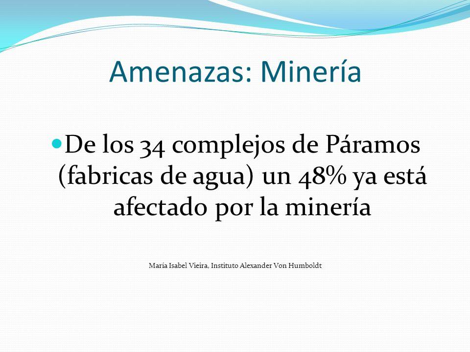 Amenazas: Minería De los 34 complejos de Páramos (fabricas de agua) un 48% ya está afectado por la minería María Isabel Vieira, Instituto Alexander Vo