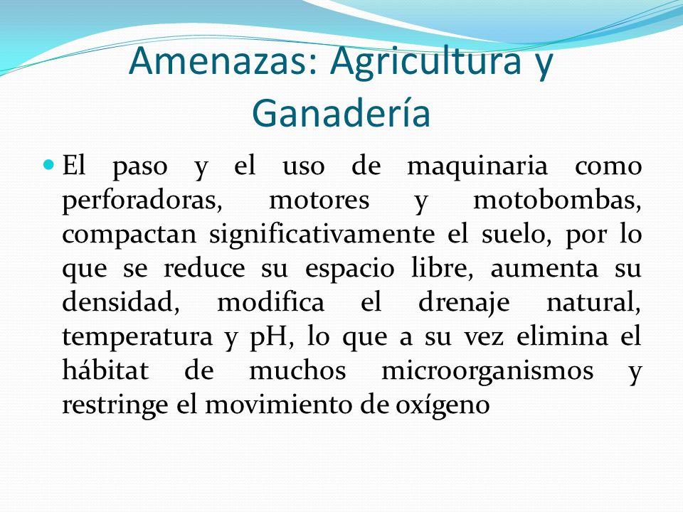 Amenazas: Agricultura y Ganadería El paso y el uso de maquinaria como perforadoras, motores y motobombas, compactan significativamente el suelo, por l