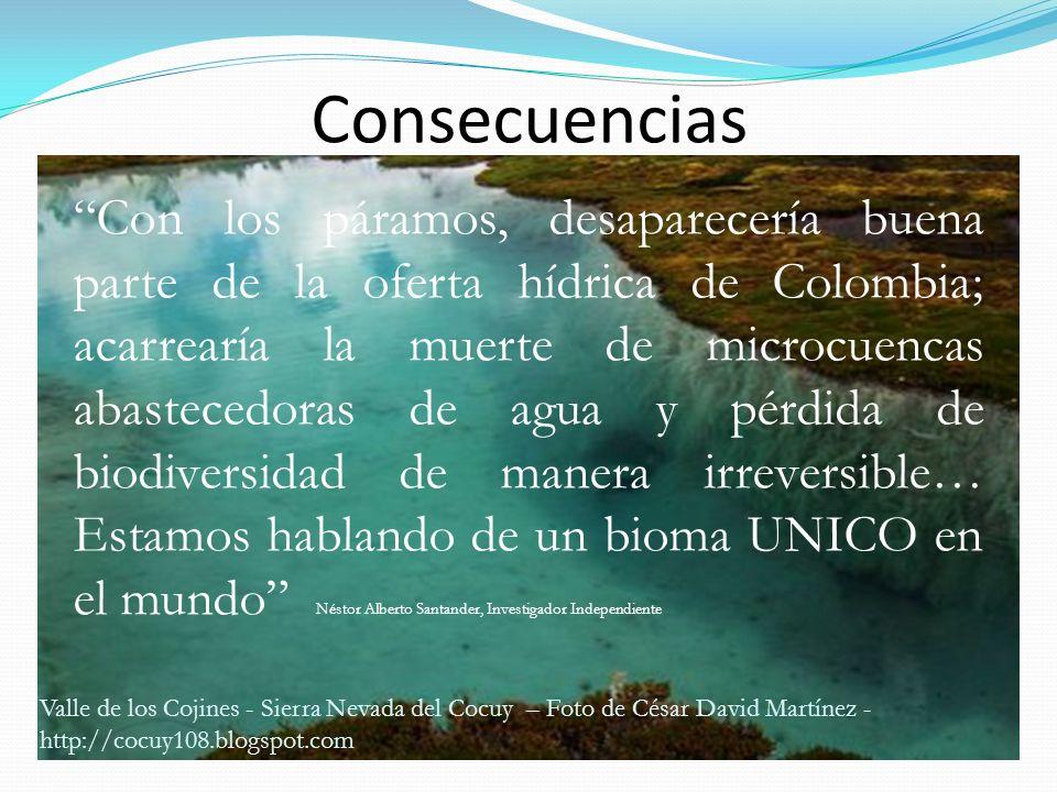 Consecuencias Con los páramos, desaparecería buena parte de la oferta hídrica de Colombia; acarrearía la muerte de microcuencas abastecedoras de agua