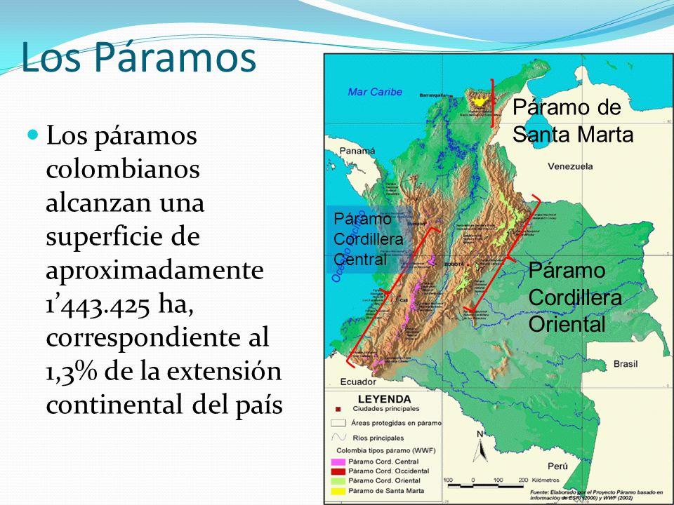 Los Páramos Las principales zonas de páramo y su extensión en Colombia son: El Macizo Colombiano (40.000 ha.) Sierra Nevada de Santa Marta (85.000 ha.) Sumapaz (205.000 ha.), Chingaza (50.000 ha.) Las Hermosas (59.500 ha.) Santa Isabel, Tolima, Ruiz (101.900 ha.) Pisba, Cocuy,Guicán y Chita (1.120.000 ha.)