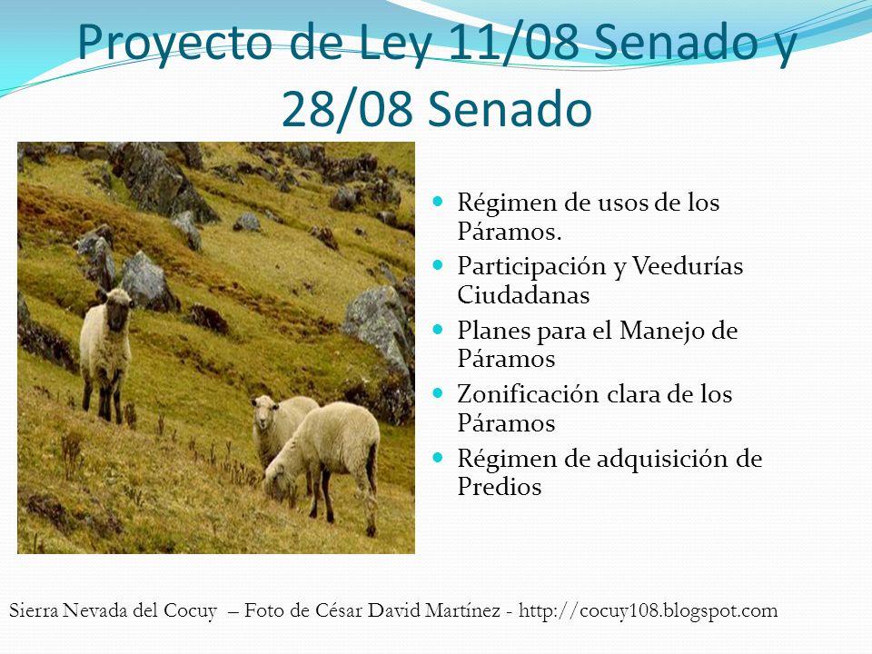 Proyecto de Ley 11/08 Senado y 28/08 Senado Régimen de usos de los Páramos. Participación y Veedurías Ciudadanas Planes para el Manejo de Páramos Zoni