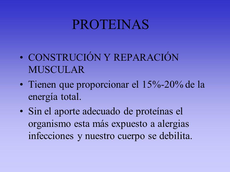 PROTEINAS CONSTRUCIÓN Y REPARACIÓN MUSCULAR Tienen que proporcionar el 15%-20% de la energía total. Sin el aporte adecuado de proteínas el organismo e