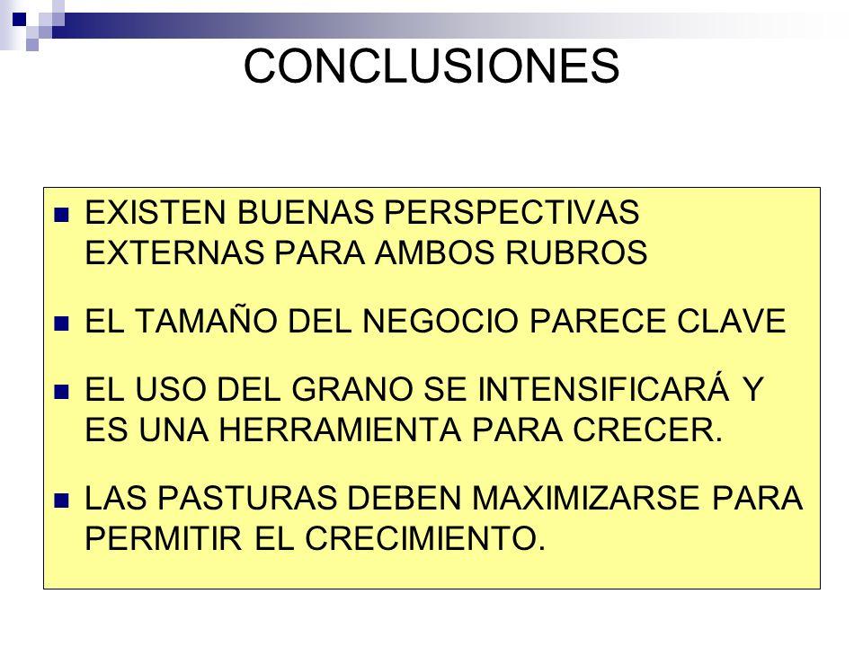 CONCLUSIONES EXISTEN BUENAS PERSPECTIVAS EXTERNAS PARA AMBOS RUBROS EL TAMAÑO DEL NEGOCIO PARECE CLAVE EL USO DEL GRANO SE INTENSIFICARÁ Y ES UNA HERRAMIENTA PARA CRECER.