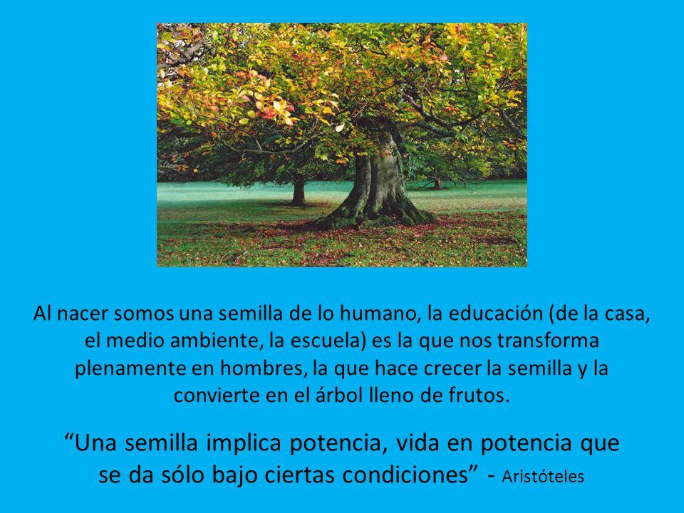 Al nacer somos una semilla de lo humano, la educación (de la casa, el medio ambiente, la escuela) es la que nos transforma plenamente en hombres, la q
