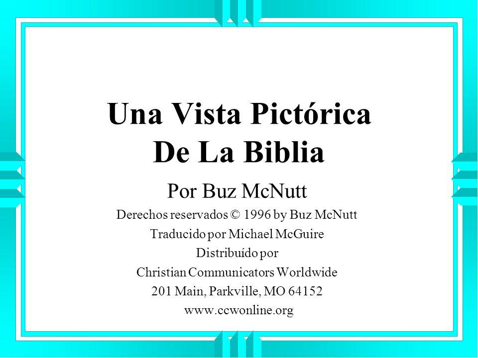 Una Vista Pictórica De La Biblia Por Buz McNutt Derechos reservados © 1996 by Buz McNutt Traducido por Michael McGuire Distribuído por Christian Commu