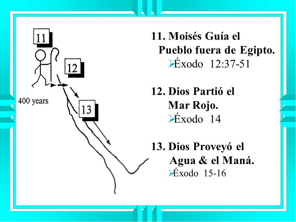 11. Moisés Guía el Pueblo fuera de Egipto. Éxodo 12:37-51 12. Dios Partió el Mar Rojo. Éxodo 14 13. Dios Proveyó el Agua & el Maná. Éxodo 15-16