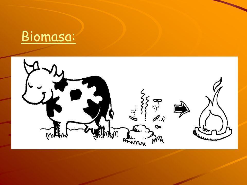 Biomasa: