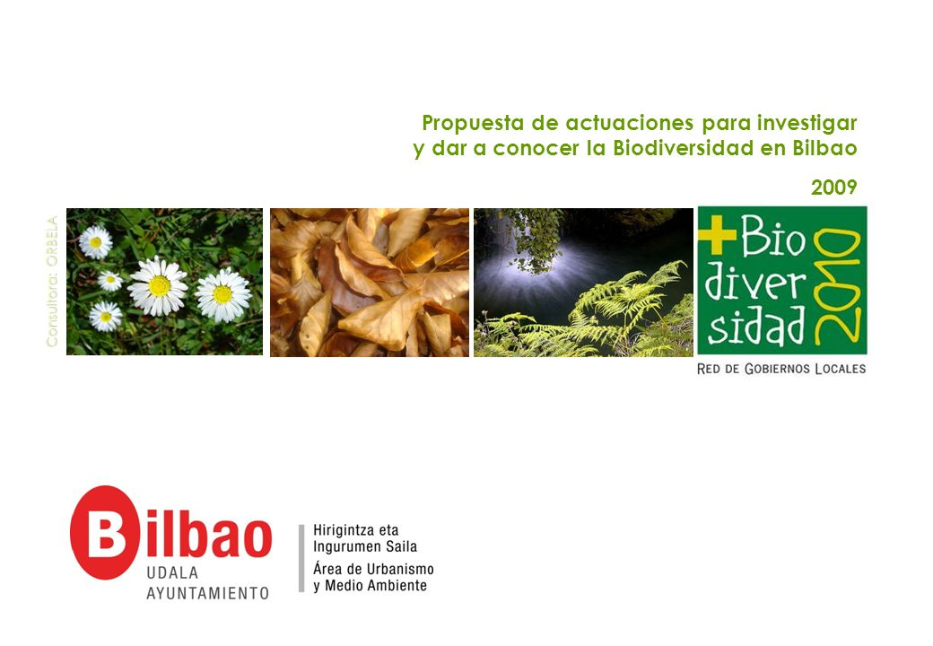 Propuesta de actuaciones para investigar y dar a conocer la Biodiversidad en Bilbao 2009 Consultora: ORBELA