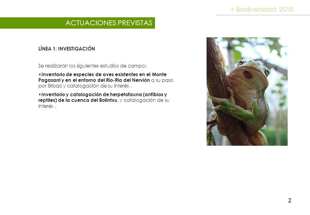 2 LÍNEA 1: INVESTIGACIÓN Se realizarán los siguientes estudios de campo: Inventario de especies de aves existentes en el Monte Pagasarri y en el entor