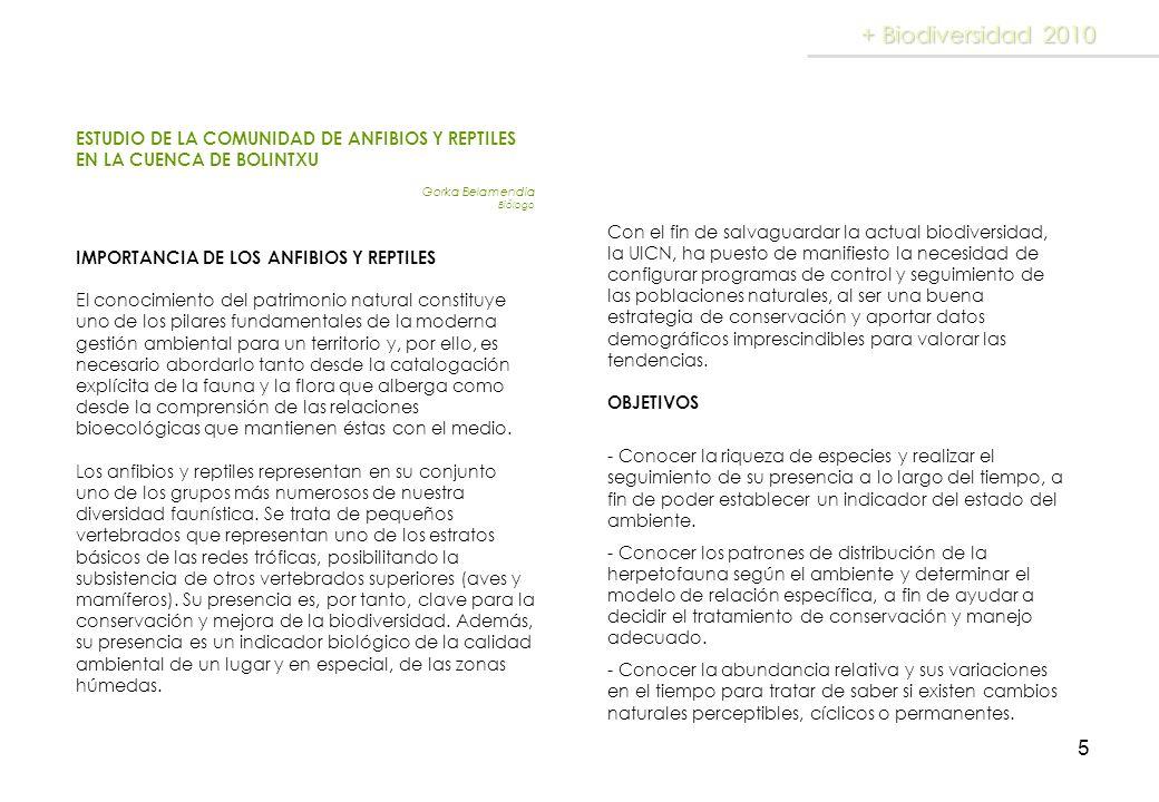 5 + Biodiversidad 2010 ESTUDIO DE LA COMUNIDAD DE ANFIBIOS Y REPTILES EN LA CUENCA DE BOLINTXU Gorka Belamendia Biólogo IMPORTANCIA DE LOS ANFIBIOS Y