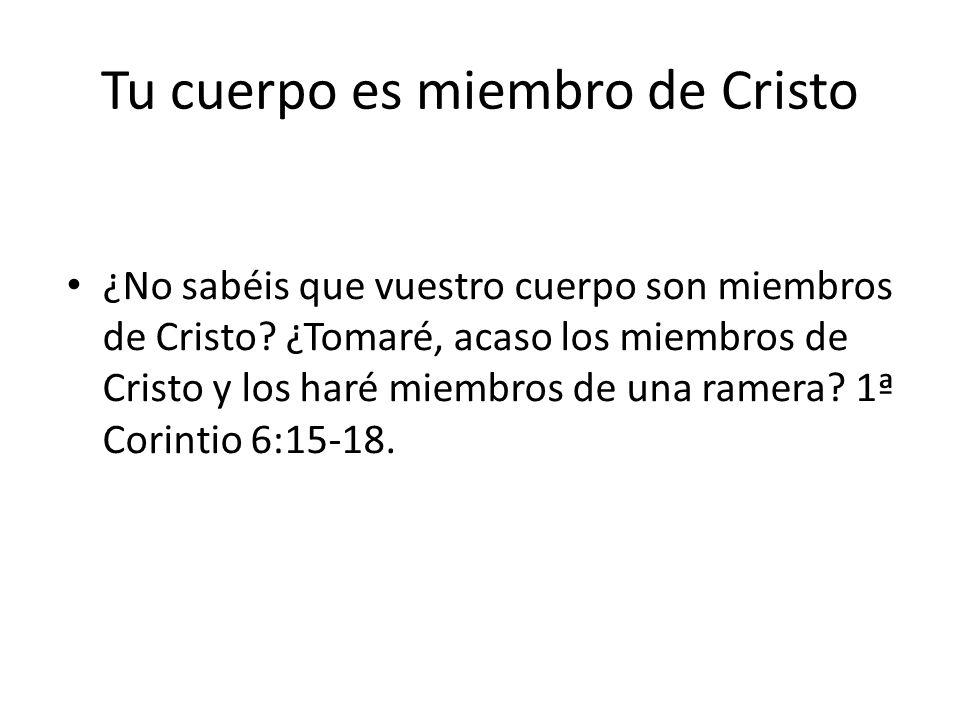 Tu cuerpo es miembro de Cristo ¿No sabéis que vuestro cuerpo son miembros de Cristo? ¿Tomaré, acaso los miembros de Cristo y los haré miembros de una