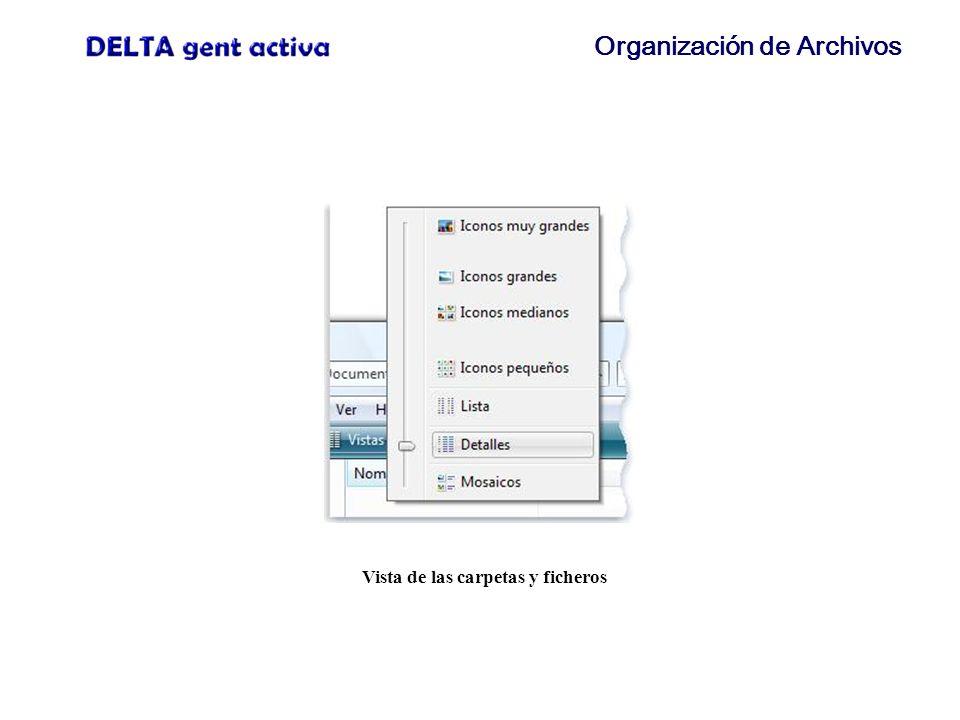 Organización de Archivos Vista de las carpetas y ficheros