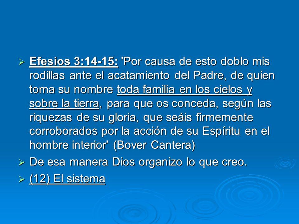 Efesios 3:14-15: 'Por causa de esto doblo mis rodillas ante el acatamiento del Padre, de quien toma su nombre toda familia en los cielos y sobre la ti