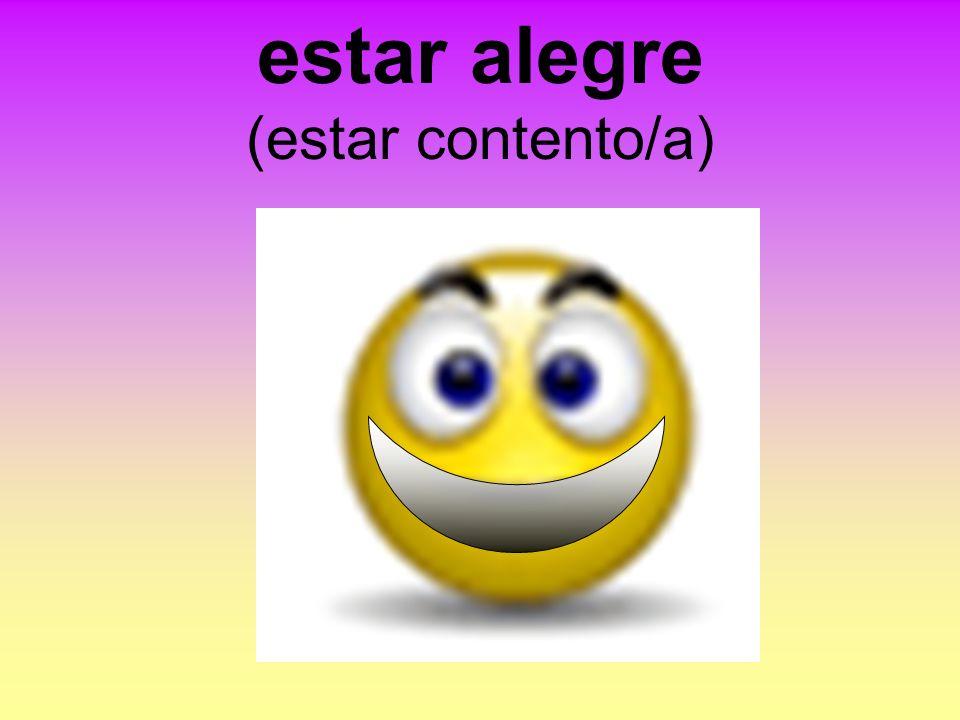 estar alegre (estar contento/a)