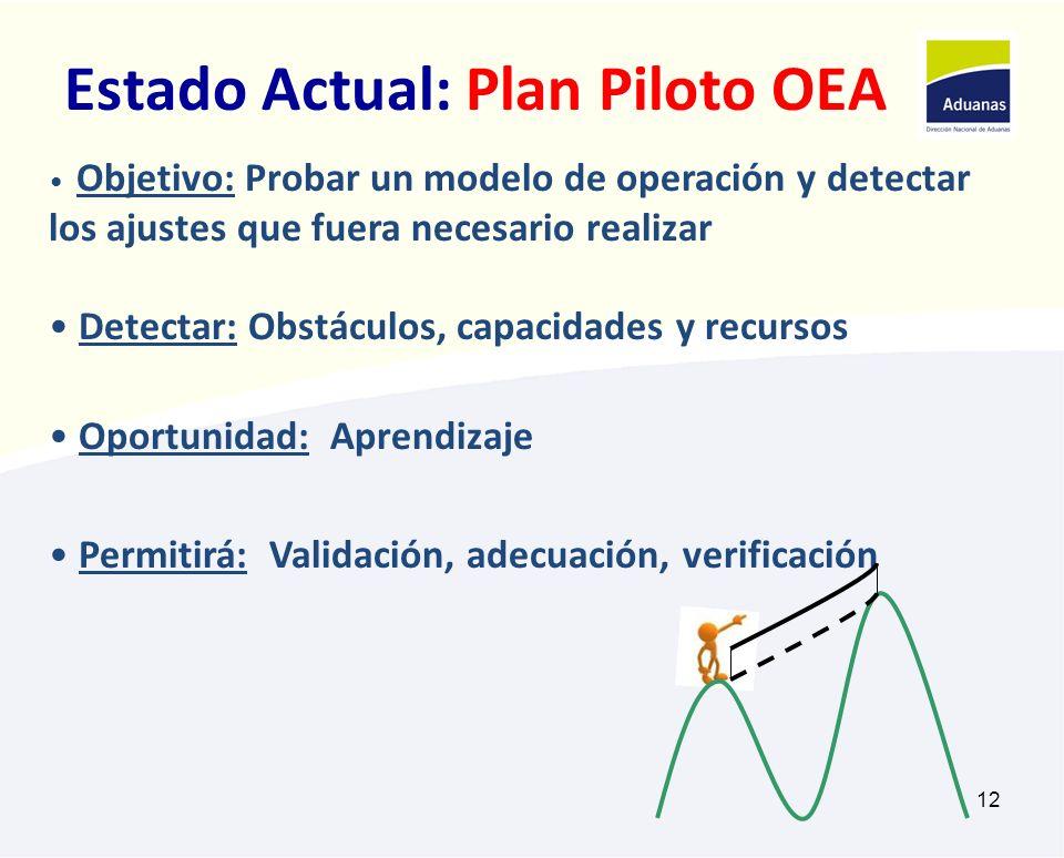 12 Estado Actual: Plan Piloto OEA Objetivo: Probar un modelo de operación y detectar los ajustes que fuera necesario realizar Detectar: Obstáculos, ca