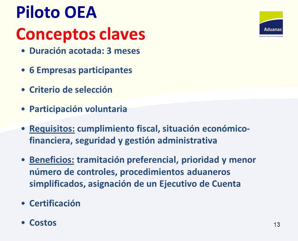 13 Piloto OEA Conceptos claves Duración acotada: 3 meses 6 Empresas participantes Criterio de selección Participación voluntaria Requisitos: cumplimie
