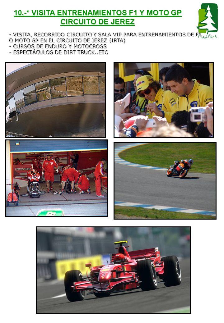 10.-* VISITA ENTRENAMIENTOS F1 Y MOTO GP CIRCUITO DE JEREZ - VISITA, RECORRIDO CIRCUITO Y SALA VIP PARA ENTRENAMIENTOS DE F1 O MOTO GP EN EL CIRCUITO