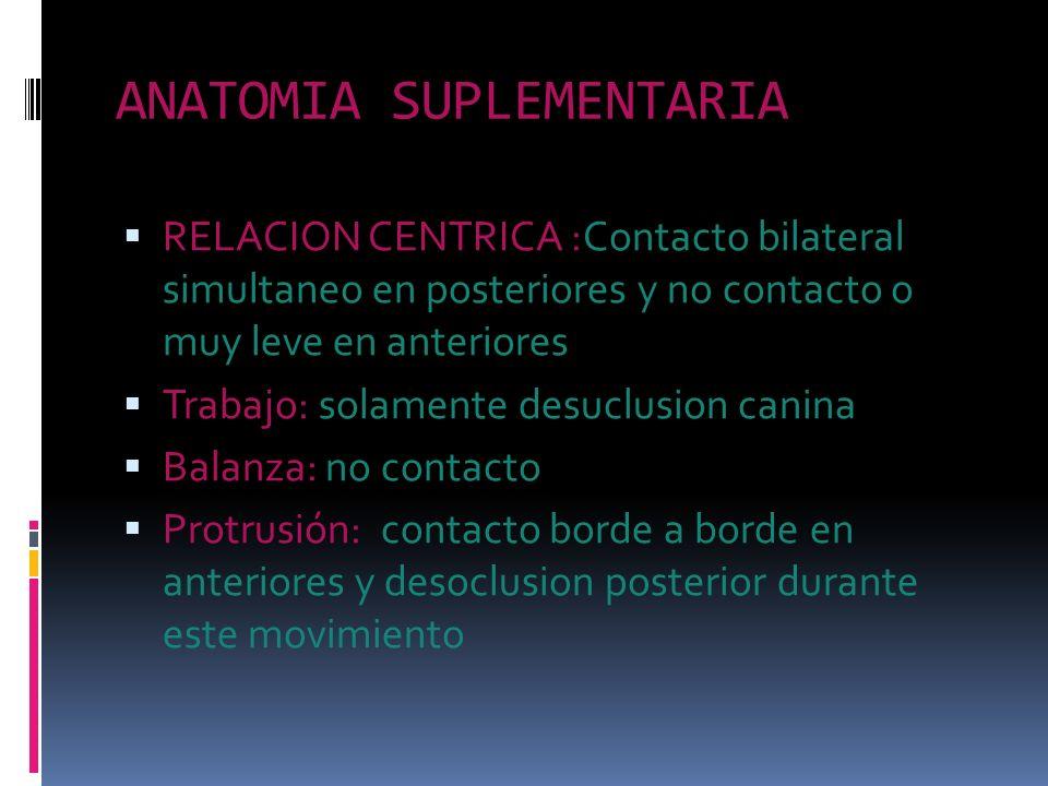 ANATOMIA SUPLEMENTARIA RELACION CENTRICA :Contacto bilateral simultaneo en posteriores y no contacto o muy leve en anteriores Trabajo: solamente desuc