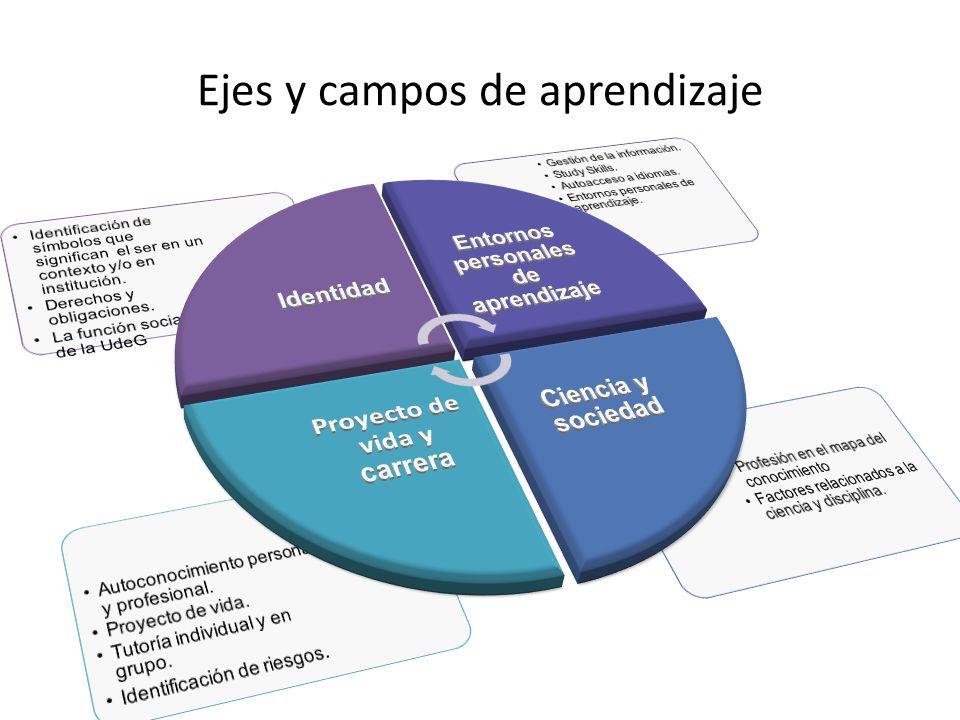 Ejes y campos de aprendizaje
