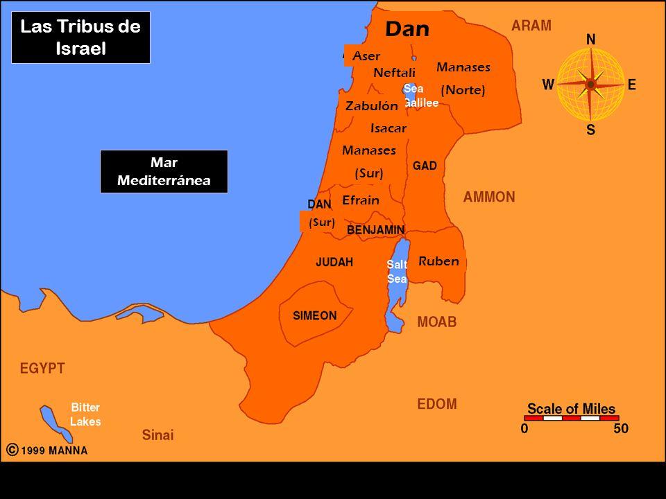 Las Tribus de Israel Dan Ruben Efrain Manases (Norte) Manases (Sur) Aser Neftali Zabulón Isacar (Sur) Mar Mediterránea