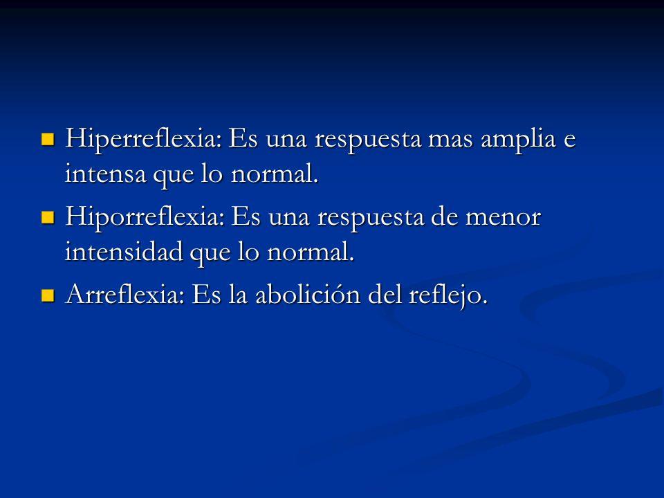 Hiperreflexia: Es una respuesta mas amplia e intensa que lo normal. Hiperreflexia: Es una respuesta mas amplia e intensa que lo normal. Hiporreflexia: