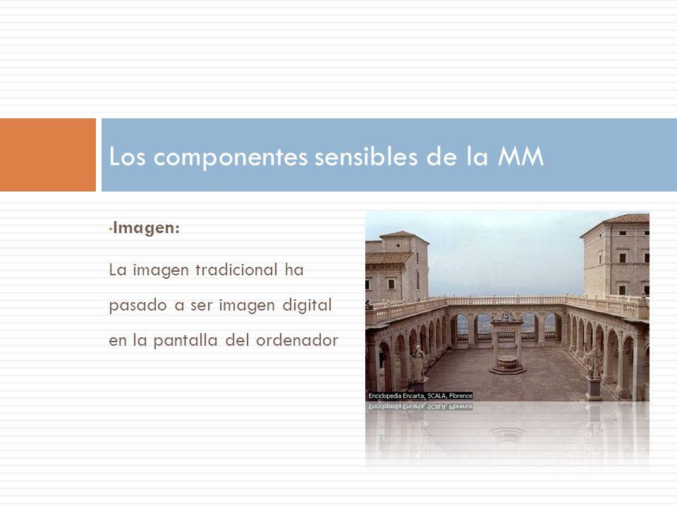 Imagen: La imagen tradicional ha pasado a ser imagen digital en la pantalla del ordenador Los componentes sensibles de la MM