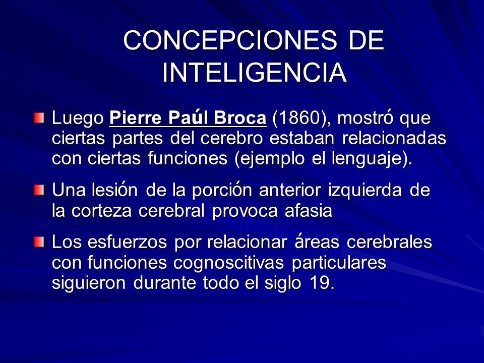 CONCEPCIONES DE INTELIGENCIA Luego Pierre Pa ú l Broca (1860), mostr ó que ciertas partes del cerebro estaban relacionadas con ciertas funciones (ejem