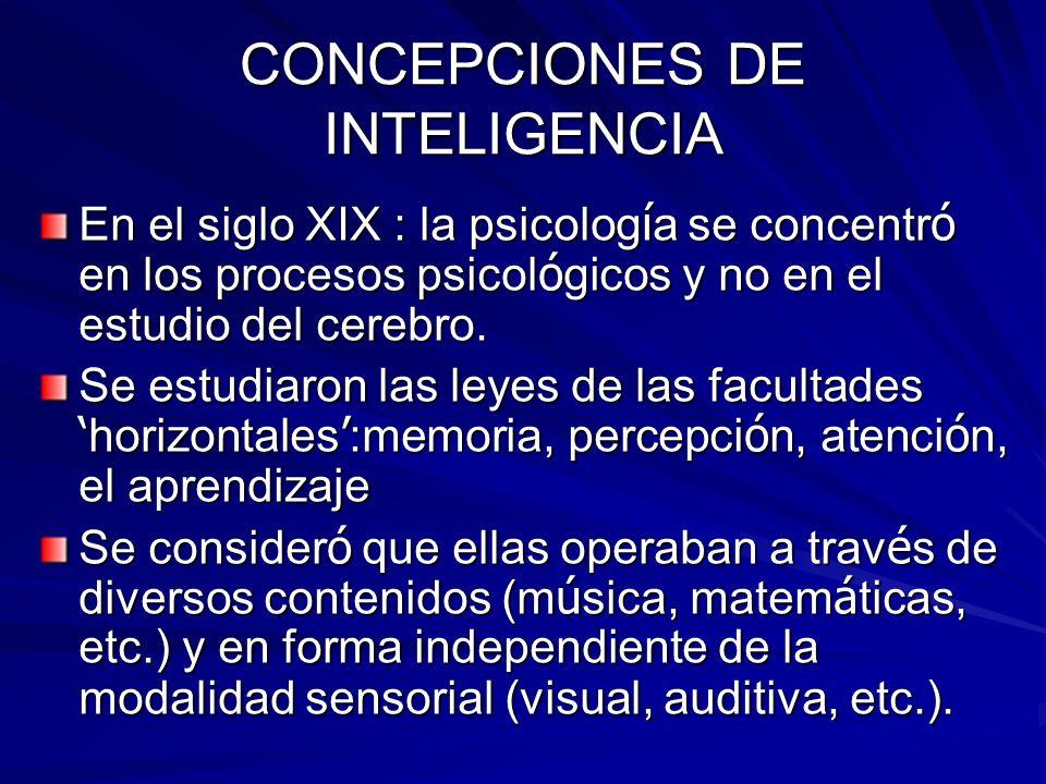 CONCEPCIONES DE INTELIGENCIA En el siglo XIX : la psicolog í a se concentr ó en los procesos psicol ó gicos y no en el estudio del cerebro. Se estudia
