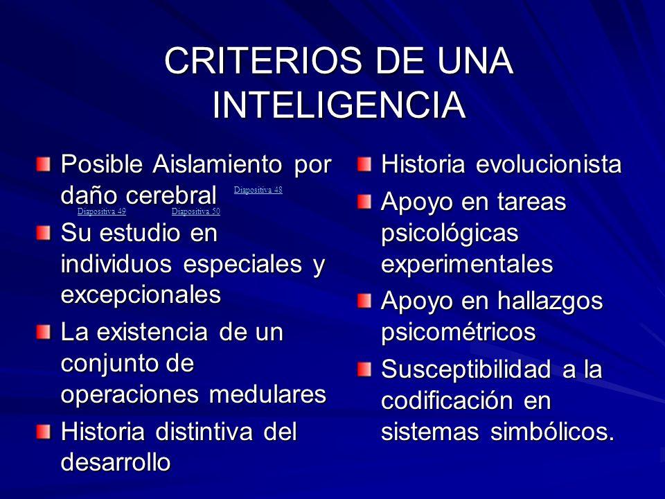CRITERIOS DE UNA INTELIGENCIA Posible Aislamiento por daño cerebral Su estudio en individuos especiales y excepcionales La existencia de un conjunto d