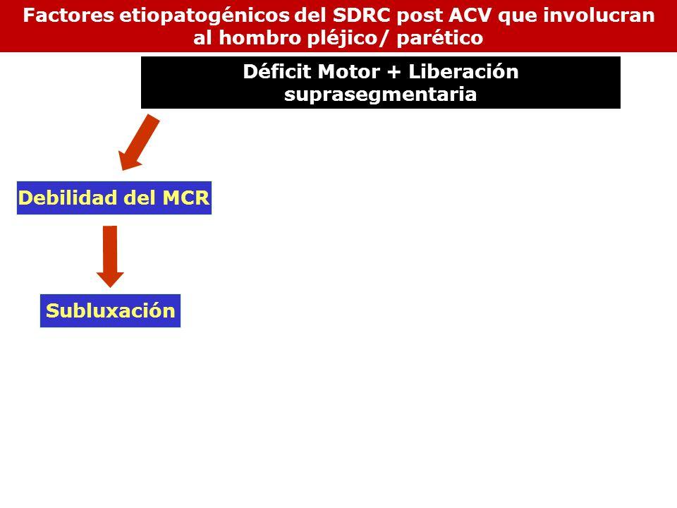 Subluxación Debilidad del MCR Factores etiopatogénicos del SDRC post ACV que involucran al hombro pléjico/ parético Déficit Motor + Liberación suprase